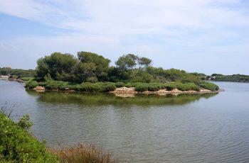 ozero-albufera