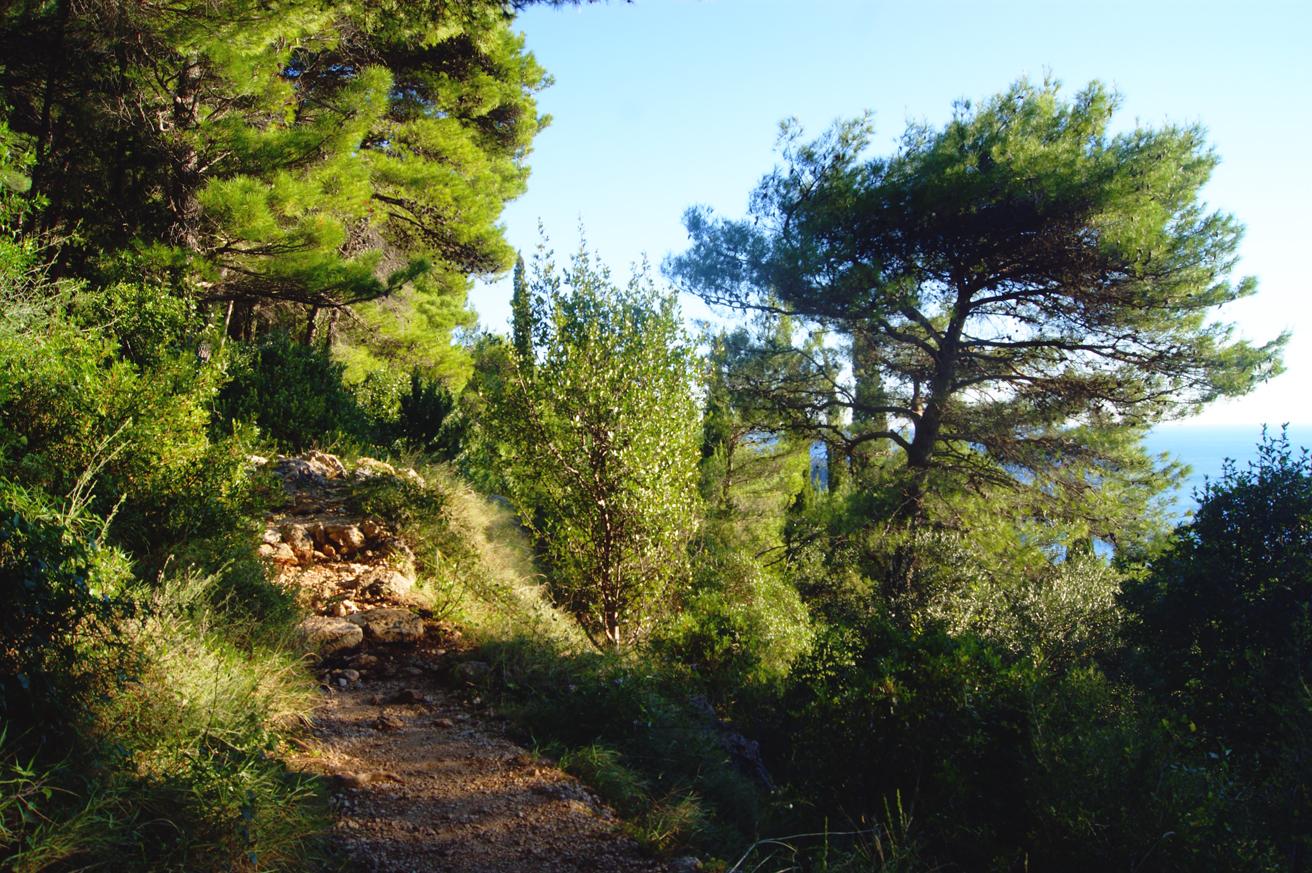 дорога на гору срдж в дубровнике