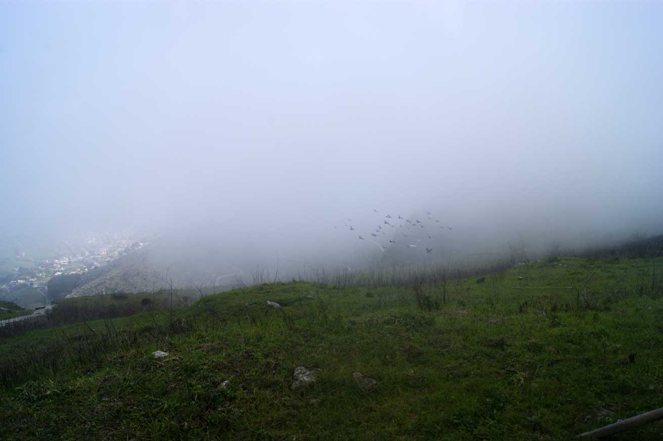 эриче туман
