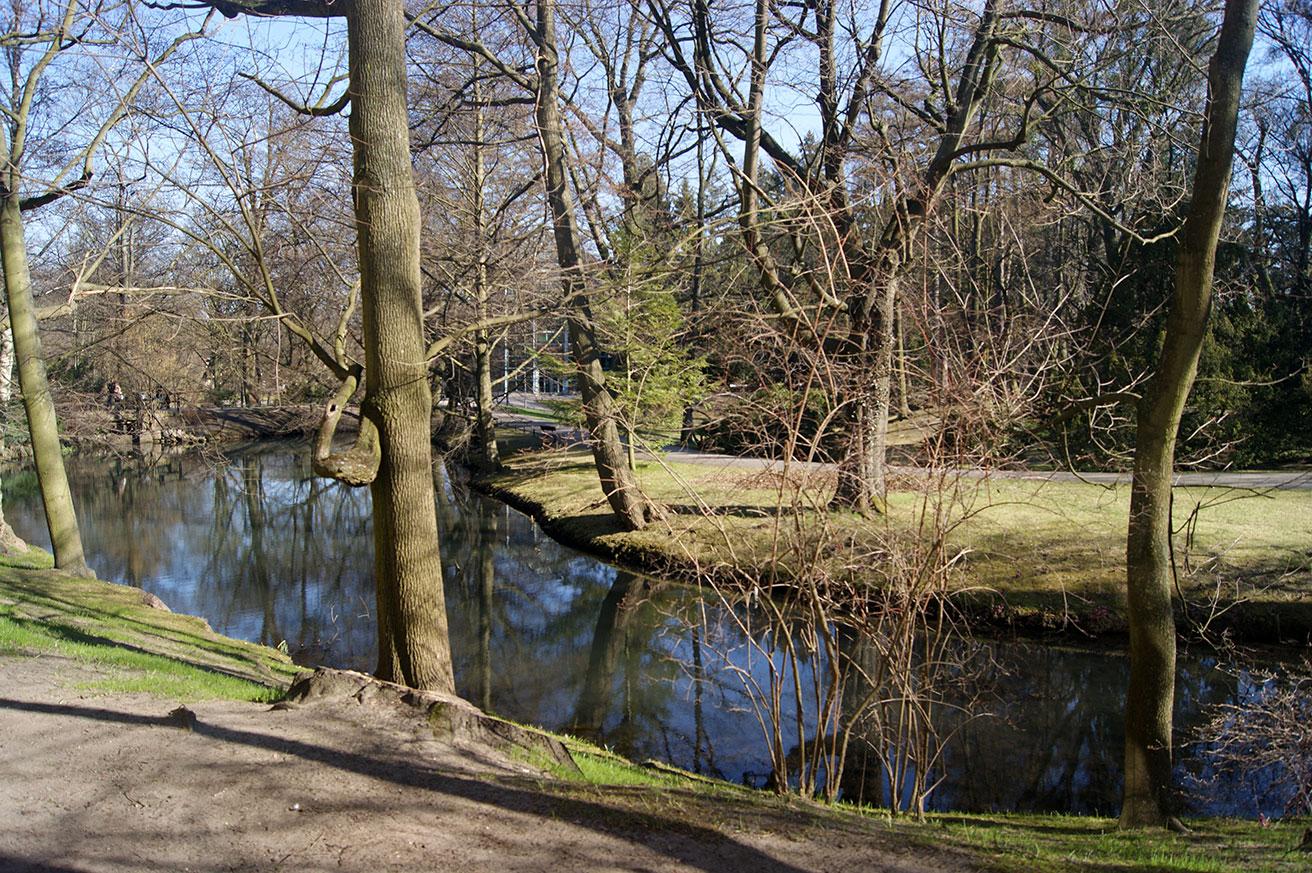 парк в оливе