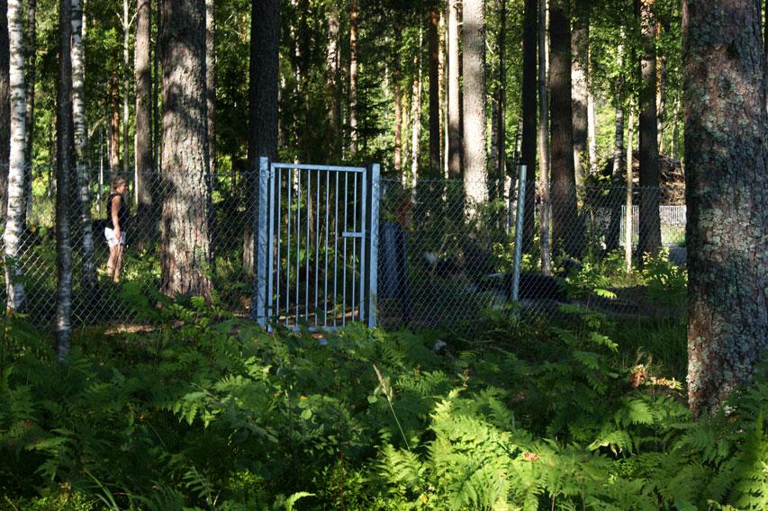 вольер для собак в Финляндии